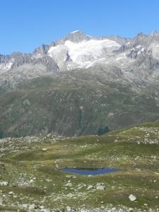 Panorama Ambiente